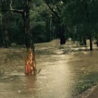 Drought, Bushfires & Floods - Flood Management